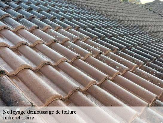 nettoyage et demoussage de toiture 37 indre et loire t l. Black Bedroom Furniture Sets. Home Design Ideas