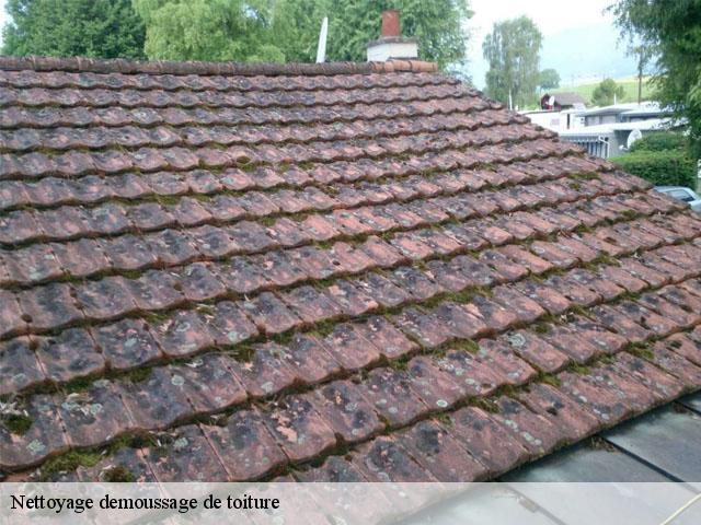 brosse nettoyage toiture simple comment faire le nettoyage et dmoussage de toiture du tarbes et. Black Bedroom Furniture Sets. Home Design Ideas
